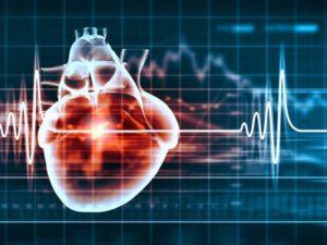 Beogad - popusti , Kardiološki pregled - Moj kupon.